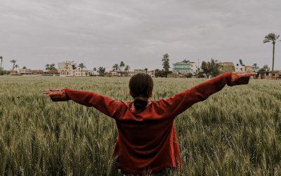 Joy in Egypt: Part 1